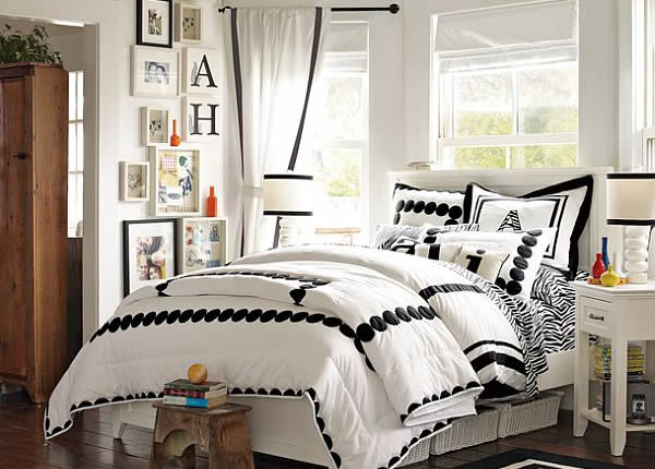 Black and White Zebra Inspired Young Girls Room
